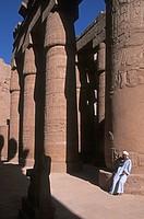Africa, Egypt, Luxor, Karnak temple ...