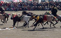 Khampas pick up Kathoks from the ground on horseback at the Litang Horse Festival in Kham _ Sichuan Province, China, Tibet