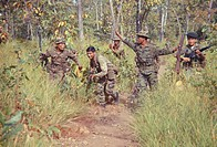 Vietnam war 1968_69, South vietnamese troops in action