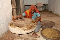 A woman using stone grinding wheel to split mustard seed before putting in the oil pressing mill , Rajasthan , India