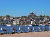 Turkey, Istanbul, Golden Horn and the Suleymaniye Mosque