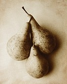 Three pears arranged in a still-life composition in a monotone and textured finish with a grain effect