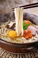 Japanese Wheat Noodles