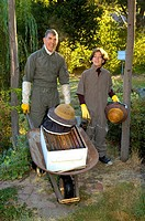 Bee keepers , father and son collecting honey frombee hive