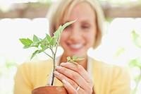 Close up of smiling woman holding seedling in ceramic flower pot