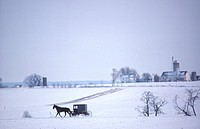Amish buggy, snow, Lancaster Co. Pennsylvania