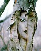 Tree face digital composite