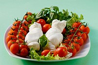 Tomato and mozzarella cheese