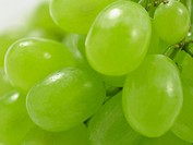 White grapes, close up