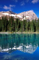 Morning light on Mount Odaray reflected in Lake O´Hara, Canadian Rockies, Yoho National Park, British Columbia, Canada