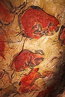 Bisons in Altamira´s reproduction cave Neo Cave  Upper Paleolithic cave paintings  Altamira museum  UNESCO World Heritage Santillana del Mar  Spain