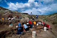 CANADA, ALBERTA, DRUMHELLER, ROYAL TYRRELL MUSEUM, TOURISTS ON DINOSAUR DIG