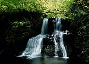 Jyoudan Falls, Takayama, Gifu, Japan