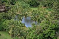 Allerton Garden, Kauai, Hawaii, U.S.A.