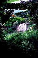 PITCAIRN ISLAND, TYPICAL HOUSE