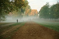 Great Britain, London, Hyde Park, people walking in morning fog
