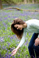 A young woman picking bluebells
