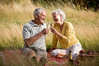 A senior couple having a picnic, making a toast