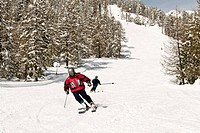 Italy, Aosta Valley, Torgnon, cross_country skiing