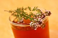 Thyme infusion Thymus vulgaris