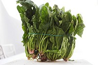 Bunch of fresh spinach (thumbnail)