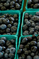 Blueberries close_up at a farmers market.
