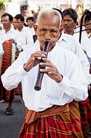 Piper at the Surin Elephant Festival, Thailand
