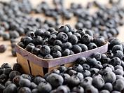 Blueberries in punnett