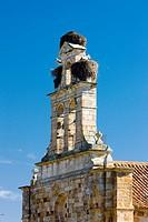 church of San Isidoro, Zamora, Castile and Leon, Spain