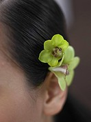 Close up of woman with flower blossom over her ear