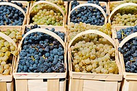 Punnets of fresh grapes on market stall