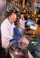 Animal germplasm storage. Technicians placing animal germplasm genetic material samples into a liquid nitrogen tank for long_term storage. This is bei...