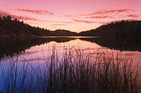 Sunset on Pink Lake, Gatineau Park, Quebec, Canada