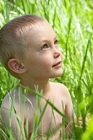 Little boy in tall grass (thumbnail)