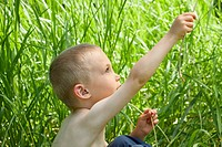 Little boy in tall grass