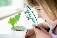 Girl looking at plant experiment (thumbnail)