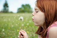 Girl blowing on dandelion (thumbnail)