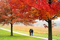 Hikers enjoy a stroll along a tree-lined path in Valley Forge National Historical Park