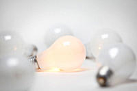 Studio shot of light bulbs
