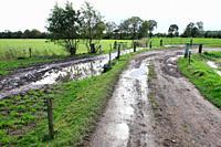 Farm landscape, The Netherlands