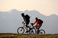 Two people on a mountain bike tour near Blaser, near Steinach am Brenner, Wipptal, Tyrol, Austria