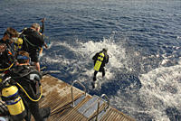 Divers entering water from back of dive boat VIP ONE, Red Sea
