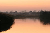 Lake and reedbeds at dusk Westhay Nature Reserve, Somerset, UK