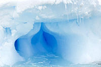 Iceberg detail in and around the Antarctic Peninsula during the summer months More icebergs are being created as global warming is causing the breakup...