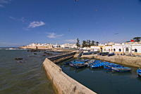 Fishing boats in the coastal city of Essaouira, Morocco, North Africa, Africa
