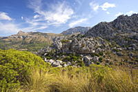 Vall de Son March, northern Majorca, Balearic Islands, Spain, Europe
