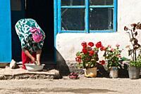 Woman with washbasin and flowers, Murgab, Pamir highway, Tajikistan, Asia