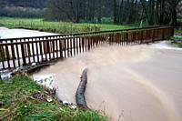 Flash Flood, damaged bridge on hill stream, autumn, Lower Saxony, Germany