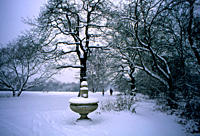Drinking trough covered in snow Hampstead Heath, London, UK
