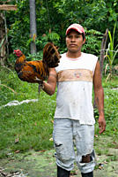 Young man early 20°s wearing torn clothes, holding a fighting cock in the air to show it off, Amazon basin, Pastaza, Ecuador